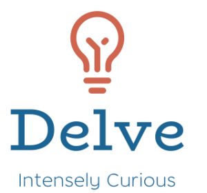 Delve Consulting
